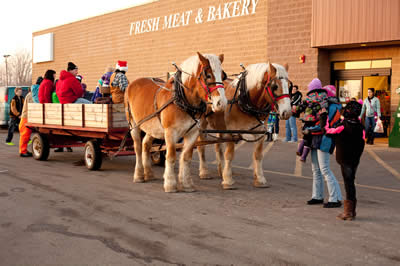 Brrr Fest horse drawn cart