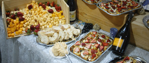 Gourmet Catering MN