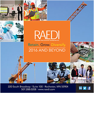 RAEDI 2016 Annual Report