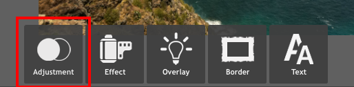 Adjustment button