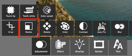 Resize button