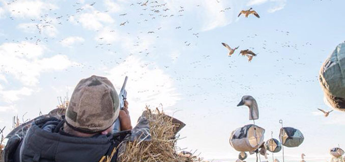 Saskatchewan Canada Spring Snow Goose Hunting - Goose Hunting Guides