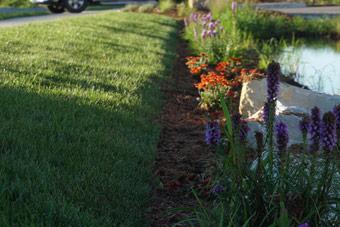 Seasonal Landscaping