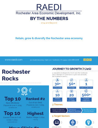 RAEDI Report 2016, By the Numbers 2014 and Beyond
